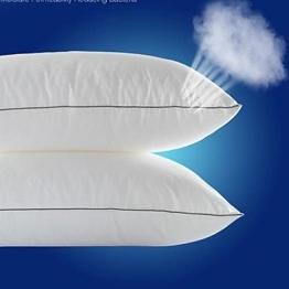 """ALZ- Mikrofaser Gesundheits bequem reinweiß Bett Kissen / Bettdecke 20 """"x 30"""" - 1"""