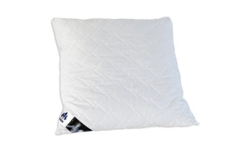 Badenia Bettcomfort 03840650123 Kissen Irisette Edition 80 x 80 cm - 1
